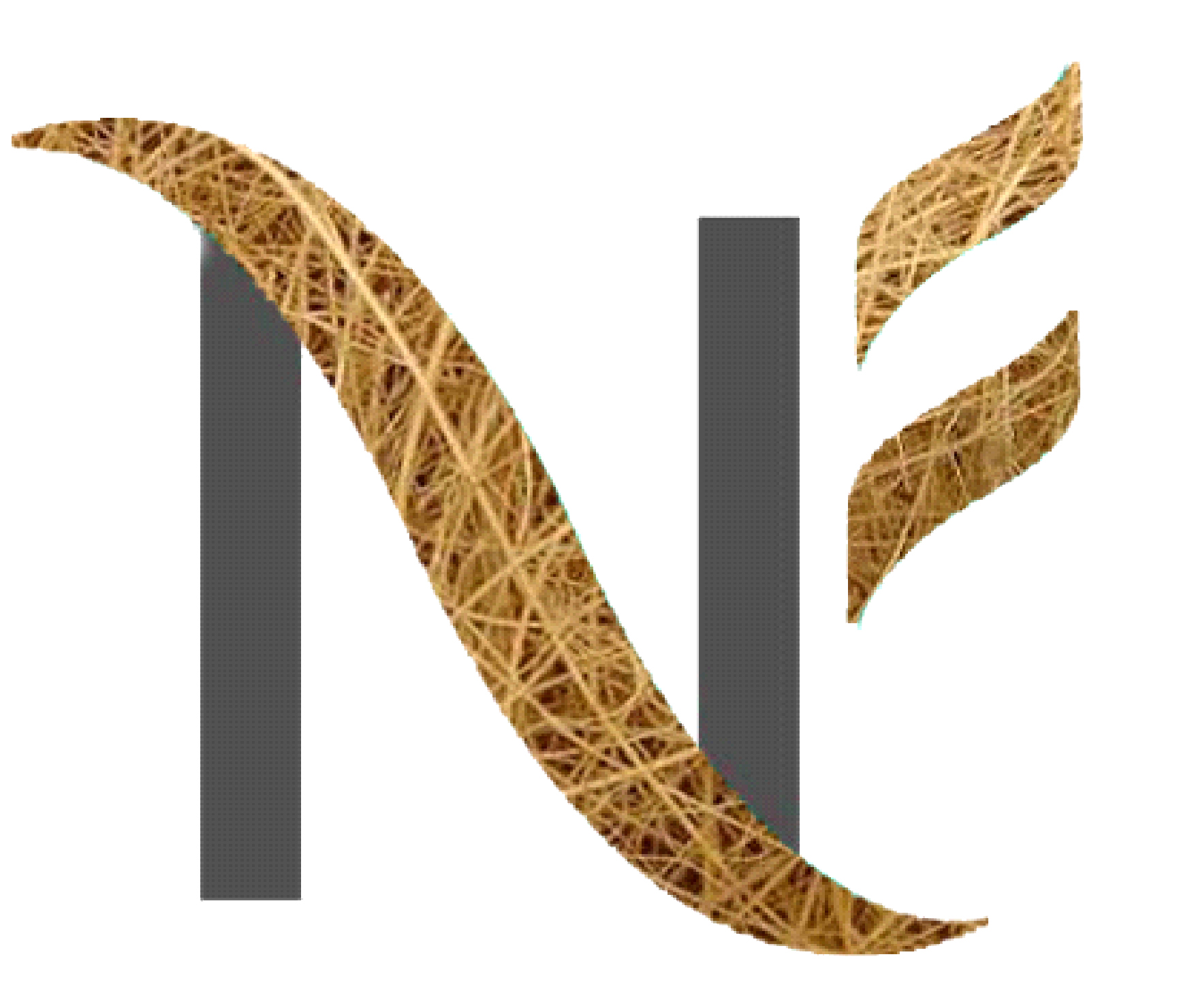 NF Coir Limited